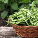 Orzo pasta green beans