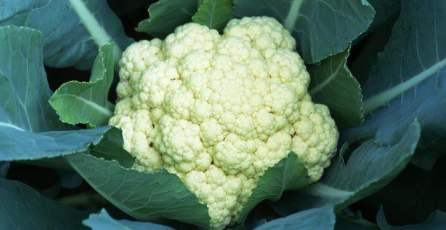 Indo chinese cauliflower